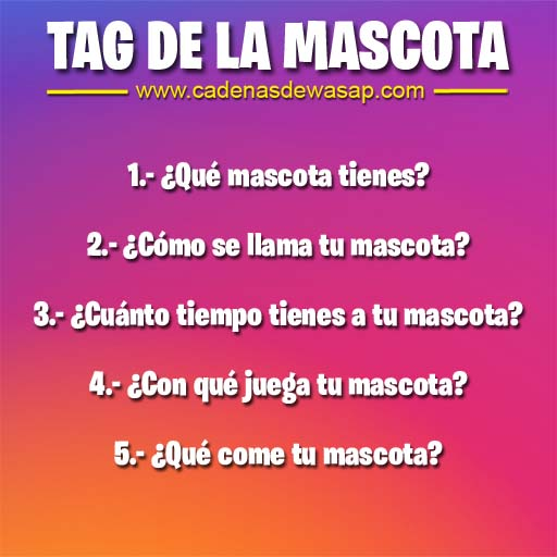 Cadena Publicacion instagram - tag de la mascota